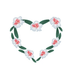 White Rhododendron Flowers in A Heart Shape vector image