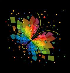 Splash butterfly on black background vector