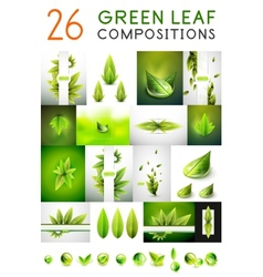 Mega collection of green summer concepts vector