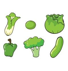 green vegetables vector image