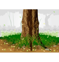 Trees in the forest vector image vector image