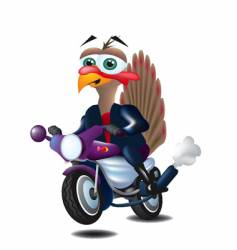 Turkey on motorcycle vector