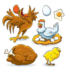 Chicken collection vector