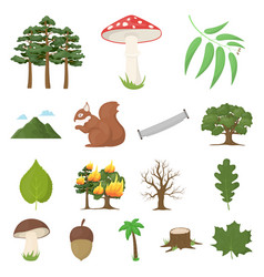 forest and nature cartoon icons in set collection vector image vector image
