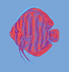 graphic aquarium fish concept vector image vector image