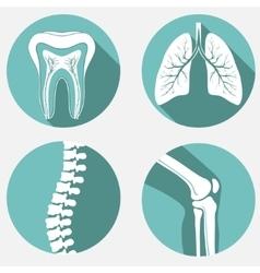 Medical labels set vector image