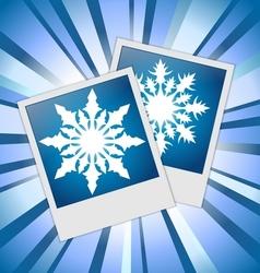 Snowflakes photos vector image vector image