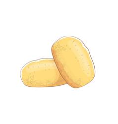 Funny cartoon cute brown potatoes set vector