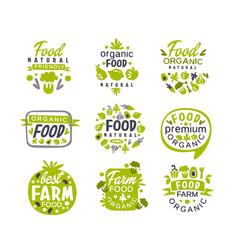 hand drawn gray and green organic healthy food vector image