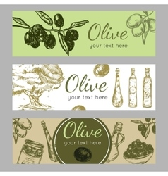 Hand Drawn Olive Oil Banner Set vector image vector image