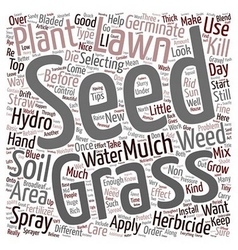 Lawn care tips text background wordcloud concept vector