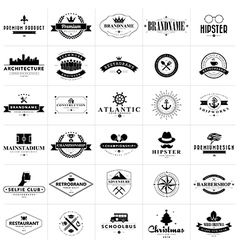 Set of vintage badges and labels vector image vector image
