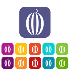Striped melon icons set vector