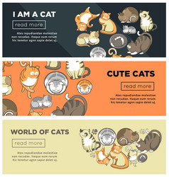 world of cute cats promotional internet posters vector image