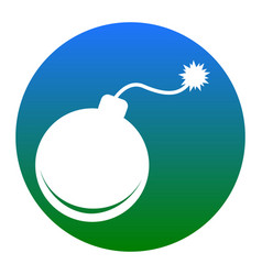 bomb sign   white icon in vector image