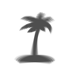 Coconut palm tree sign  gray icon shaked vector