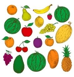 Enjoyable freshly harvested fruits berries icons vector