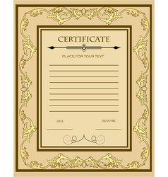 A custom certificate template with gold ornaments vector