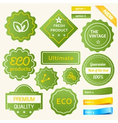 Eco Green Design vector image vector image