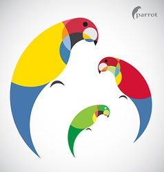 Image of an parrot design vector