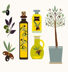 Olives set olive oil branch vector