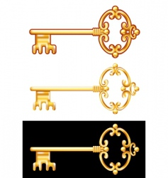 gold key vector image vector image