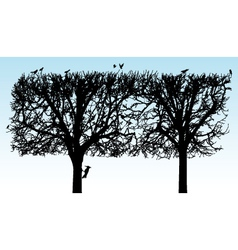 Silhouette tree vector