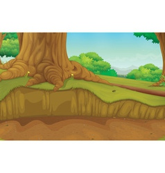 Tree trunk forest scene vector image