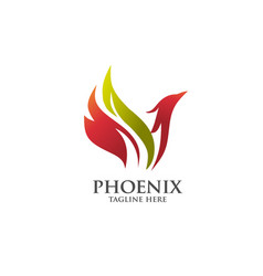 Best phoenix logo vector