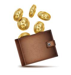 bitcoin wallet money brown bitcoin vector image vector image