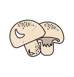 Delicious fresh mushrooms organ food vector