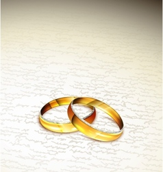 Two rings vector image