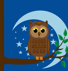night owl vector image