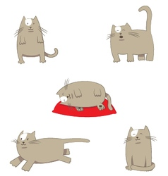 Funny stylized cartoon grey Cat in different poses vector image vector image