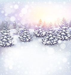 Winter landscape background with christmas trees vector