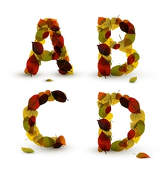 Fall alphabet letters vector image