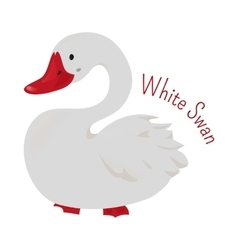 White cartoon swan isolated vector image vector image