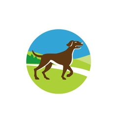 English pointer dog pointing up circle retro vector