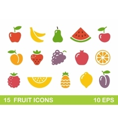 Stylized of fruit icons vector image vector image
