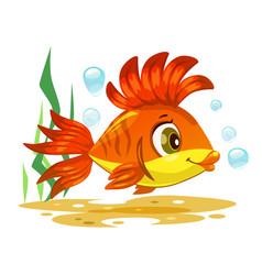 cute orange tropical fish vector image