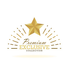 Exclusive collection sale golden badge gold label vector