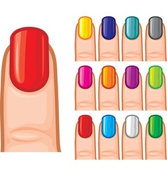 Set of nail polish in different colors vector image