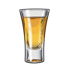 Hand drawn glass full of gold tequila isolated vector