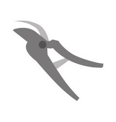 Pruners tool gardening vector