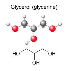 Chemical formula and model of glycerol molecule vector