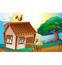 hens and house vector image vector image
