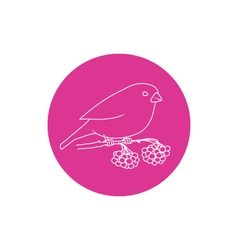 Linear icon bullfinch vector