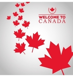 Canadas county design maple leaf icon welcome vector