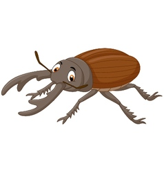 Cartoon stag beetle vector image vector image