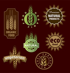 Collection of floral eco sign vector